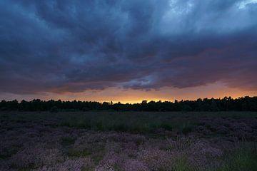Heidelandschaft mit Sonnenuntergang und lila Himmel von Herman Peters