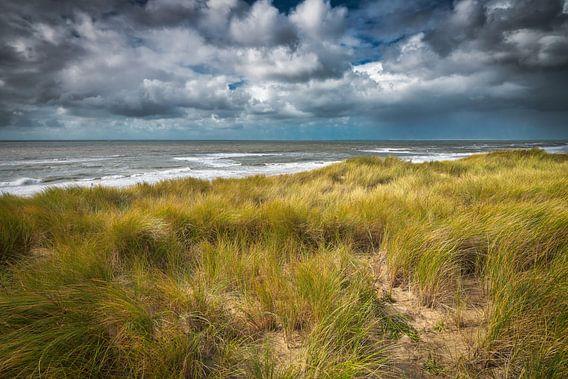 De kustlijn met de Noordzee en de duinen