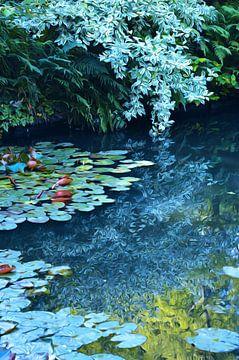 Waterlelies van Diana Mets