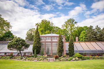 Alte Gewächshäuser im Botanischen Garten von Karlsruhe von Evelien Oerlemans