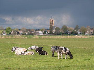 Koeien in de wei met kerk van Eemnes van Robin Jongerden