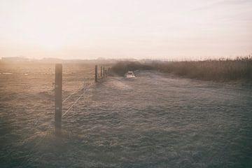 frühmorgens von Karin vanBijleveltFotografie