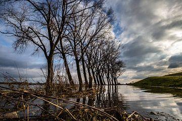 Deventer, Ijssel, Hoog Water. sur Frank Slaghuis