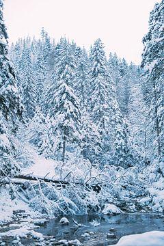 Blauw Winters Landschap sur Patrycja Polechonska