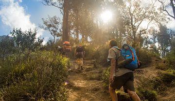 Mount Rinjani klimtocht van Thom Sabel