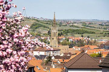 Église du château de Bad Dürkheim sur la route des vins sur Fabian Bracht