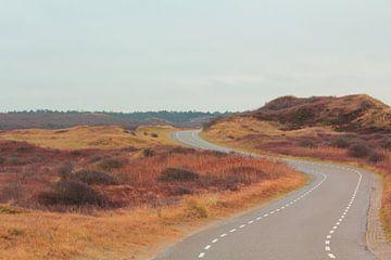 """""""Route sinueuse à travers les dunes de Texel. sur Capture the Moment 010"""