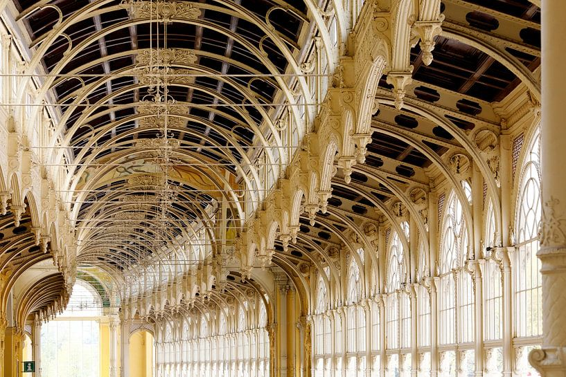 Colonnade Mariansky Lasni - Tsjechie van Marianne Ottemann - OTTI