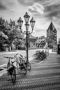 NUREMBERG Haybridge | Monochrome