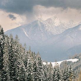 Alpine Vision von Martijn van der Nat
