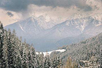 Alpine Vision van Martijn van der Nat