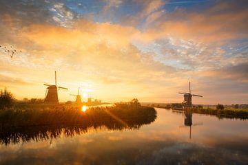 Paysage du matin d'été avec des moulins à vent en Hollande au lever du soleil sur iPics Photography