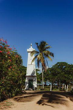 Das Licht von Corumbau | Bahia von Vandaag is nu