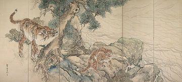 Tiger-Familie, Kishi Ganku