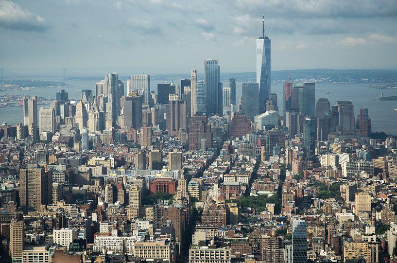 Uitzicht over New York City vanaf Empire State Building van Karin Mooren