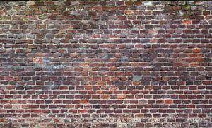 Baksteen oude muur Fotobehang 8