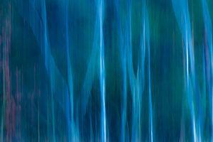 Abstract 'Berkenbos met blauwzweem'