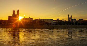 Maagdenburgse skyline bij zonsondergang van Frank Herrmann