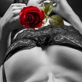 Vrouw met een roos van Carl Remmers
