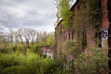 Fort de la Chartreuse (5) von Ernst van Loon