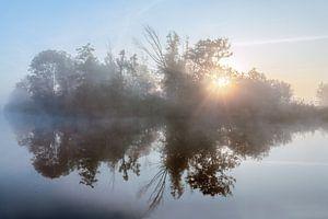 Zonsopkomst in de mist door de bomen met een waterreflectie