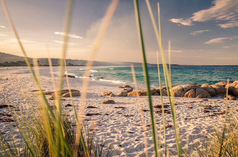 Bay of Fires in Tasmanië, Australië