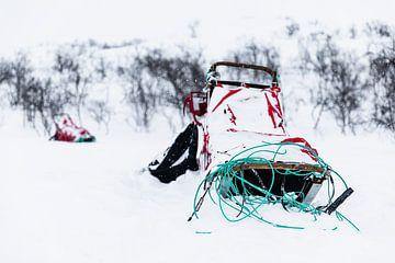 Slee in besneeuwd winterlandschap