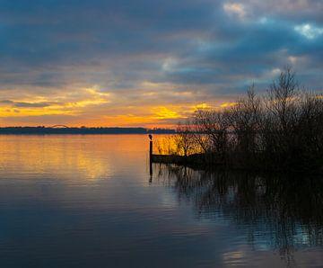 Reiger met zonsondergang van Lynlabiephotography