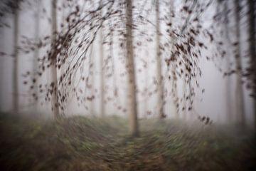 Het sinistere bos von Ronald De Neve