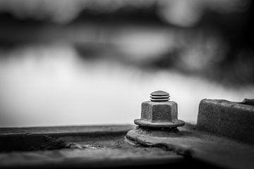 Black and White close up nut mounted on bridge