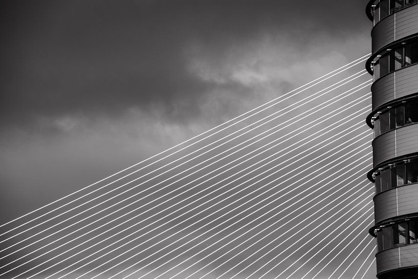 Lijnenspel in Rotterdam van Ton de Koning