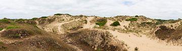 Dune du Perroquet panorama van Werner Lerooy