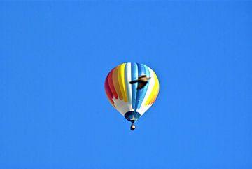 Hete luchtballon met duif van Norbert Sülzner