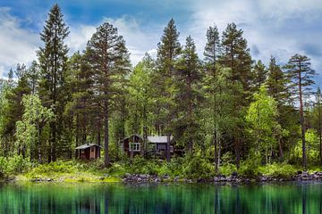 Hutje aan het meer van Arjen Roos