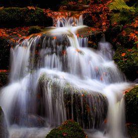 Cascades van Thomas Herzog
