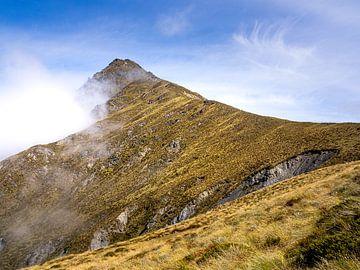 De piek van Mount Ben Lomond nabij Queenstown in Nieuw-Zeeland van Rik Pijnenburg