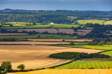 Die Landschaft von Shaftesbury in Dorset, England