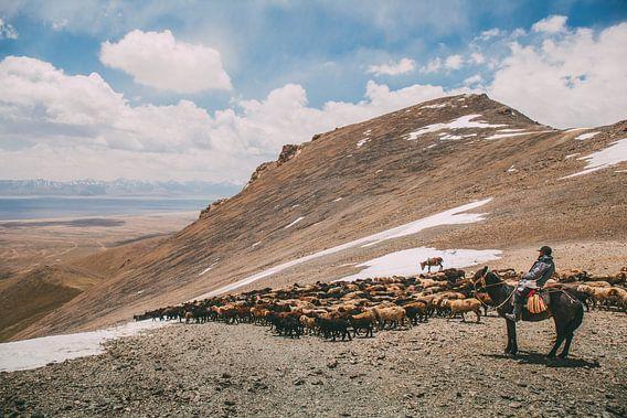 A shepherd and his animals crossing the mountain pass van Reinier van Oorsouw
