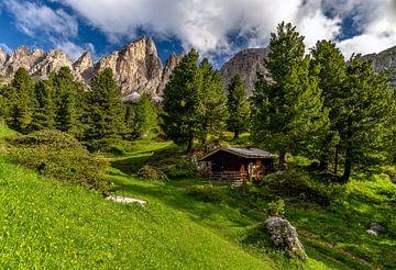Frühling in Südtirol von Achim Thomae