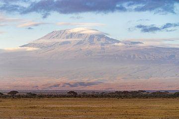 De Kilimanjaro. van Monique van Helden