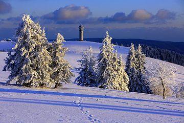 Winter in het Zwarte Woud van Patrick Lohmüller