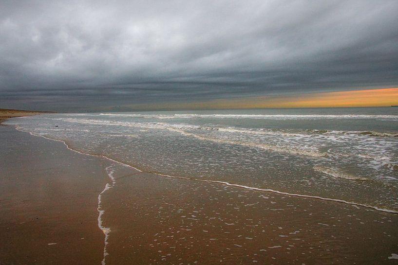 Art of Nature van Dirk van Egmond