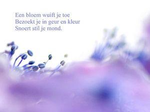 Een bloem wuift je toe