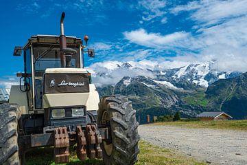 Tracteur Lambo sur Natasja Tollenaar