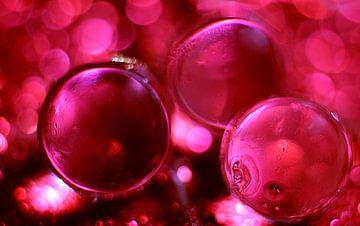 Rode druppels von Kvinne Fotografie