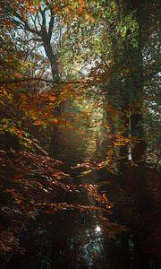 Schilder het bos van