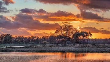 Wetland tegen oranje bewolkte hemel tijdens zonsondergang van Tony Vingerhoets