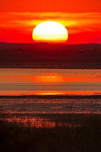 Natuur   Rode zonsondergang op Texel van