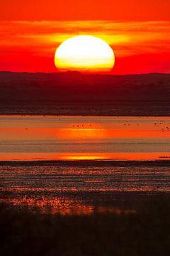 Natur | Roter Sonnenuntergang auf Texel von Servan Ott
