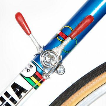Bottecchia Rennrad, Campagnolo Umwerfer von Leon van Bon